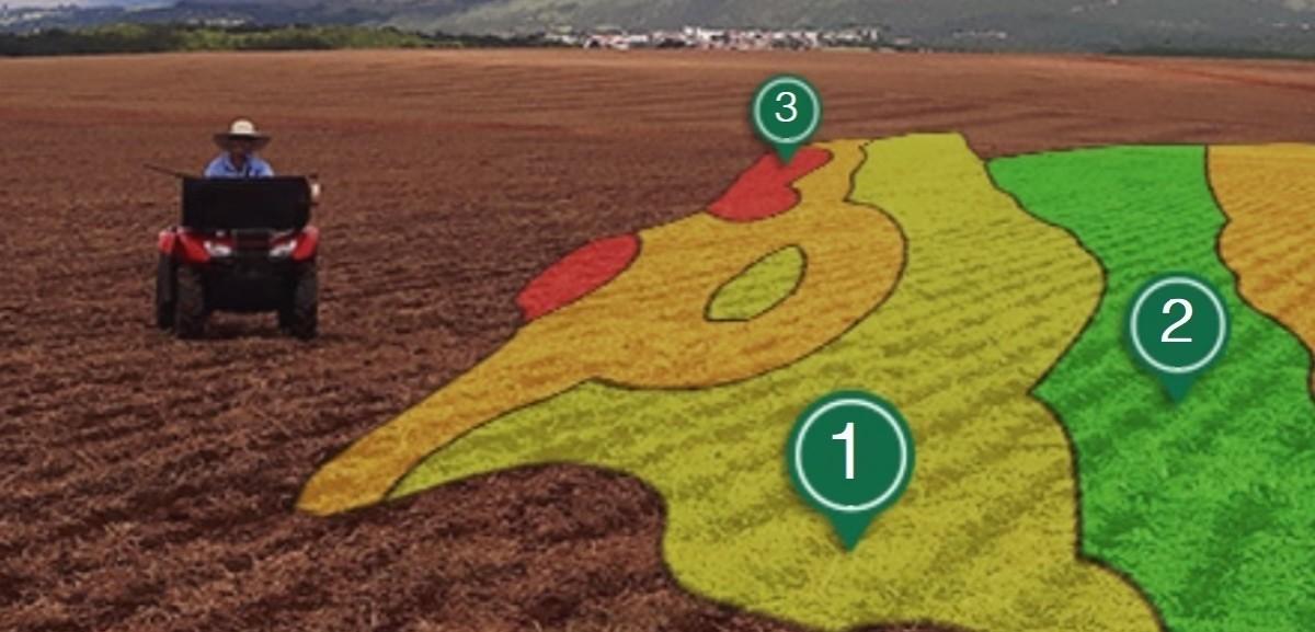 Amostragem estratificada, como fazer na sua fazenda?